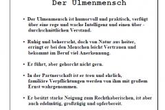 1Garten-und-Kunstausstellung-in-Ostfriesland-an-die-Nordseekueste-offener-Gartentuer-Garten-und-Kunst-de-Wolff-Wenn-sie-ihren-Garten-neu-anlegen-ist-dies-ihre-Adress-22